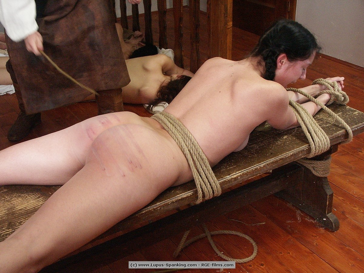 Caning Lupus Bdsm School Paddle