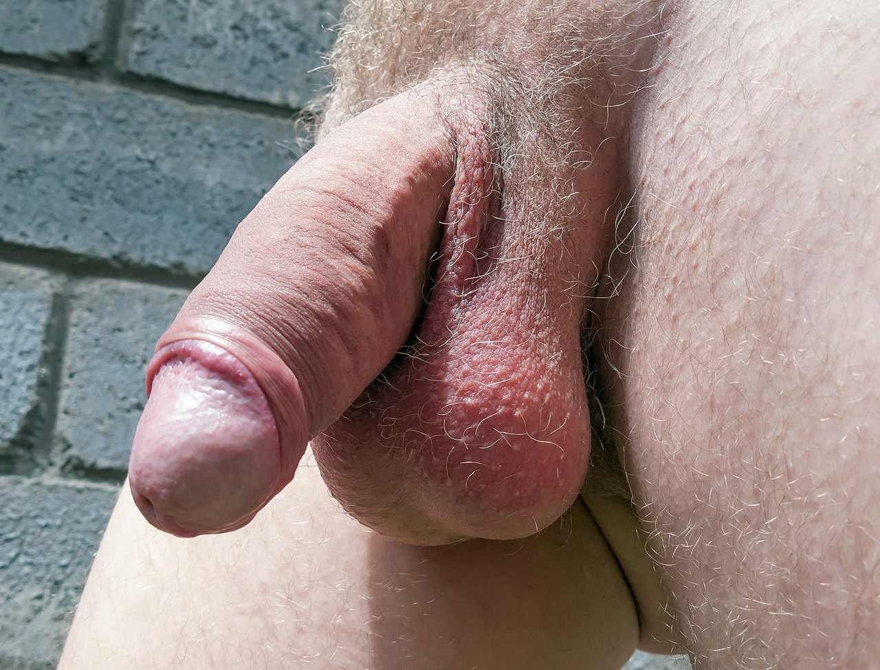 Closeup picture of a fully erected penis